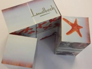 Magic Cubes til Lundbeck